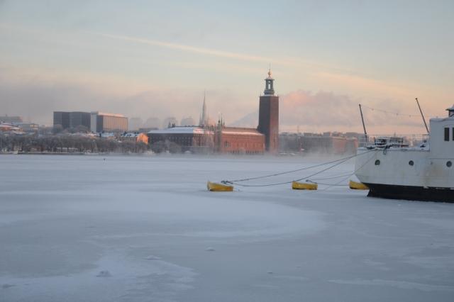 Riddarfjärden ser frusen ut rakt över, sjok av dis driver framför Stadshuset. Vänta - är det inte en svart prick på isen där, nedanför den eländiga Water Front? Kan det vara ...?