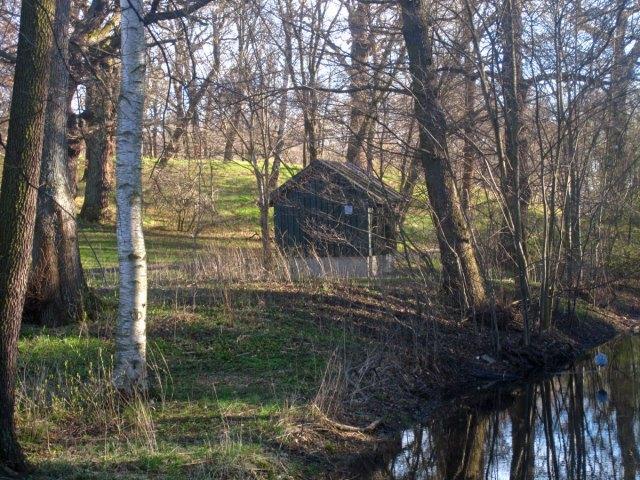 En bild från april - träden var ännu kala. Varför gillar jag bilden? Kanske har att göra med det milda pastellartade ljuset. Vattnet är den bäck som leder från Laduviken mot våtmarken Lillsjön och vidare mot Husarviken. En grå fläck i vattnet är i själva verket en fiskande häger.