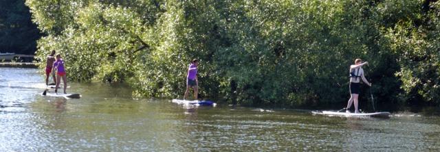 En eftermiddag i heta juli syntes det här gänget komma paddlande i Pålsundskanalen. SUP uppenbarligen. Som trogne läsaren Gabrielle tidigare har meddelat så kallas det här Stand Up Paddling, SUP!