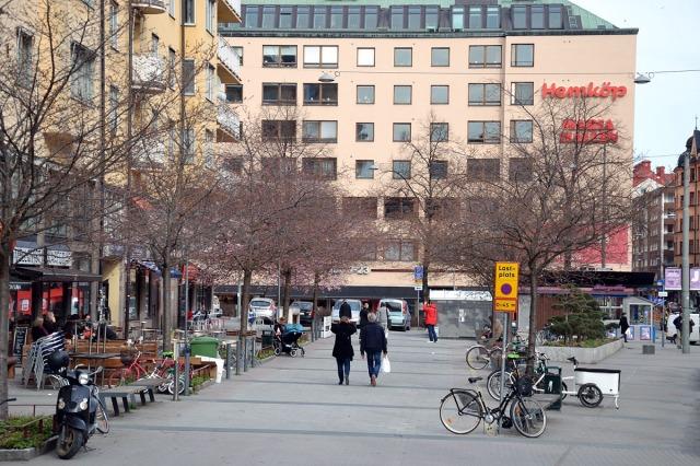 Sett på håll verkar det ännu inte vara full fart på de japanska körsbärsträden på Hornsgatan ...