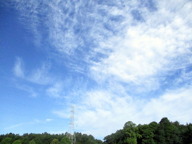 moln djurgården