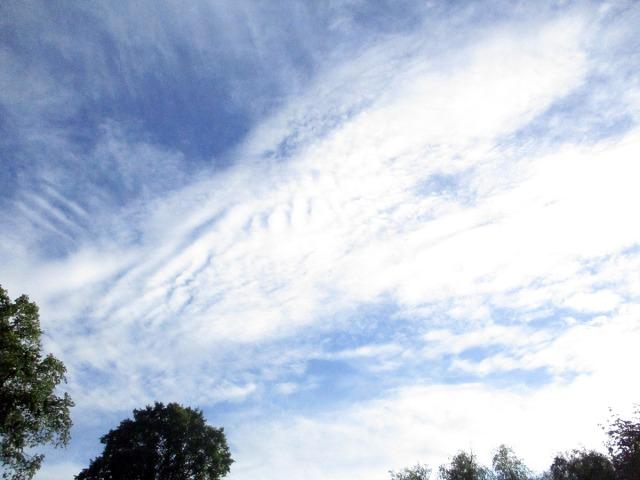 moln långholmen